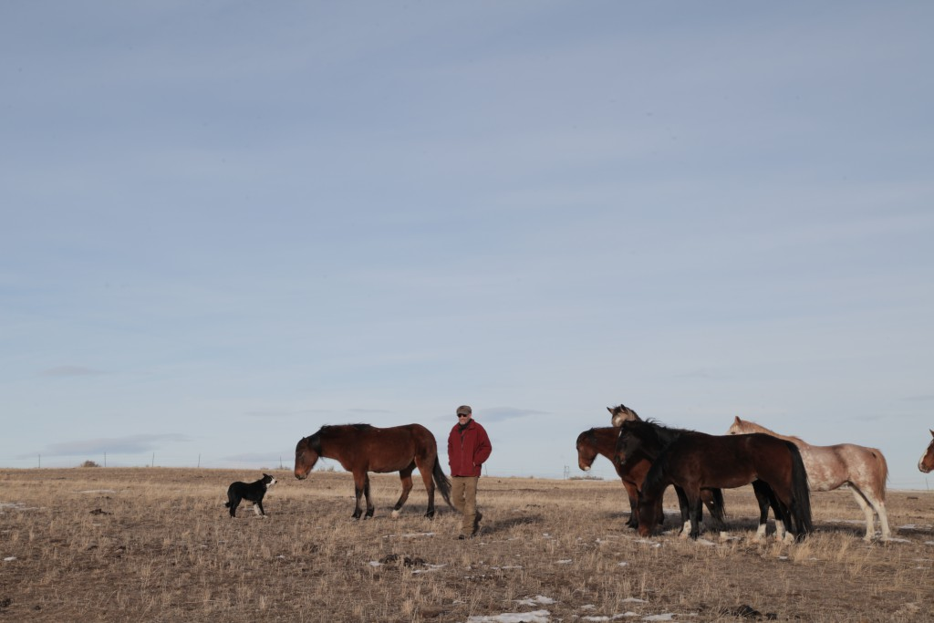 powder_river_basin_coal_ranch_horses_plus_m_productions_momenta